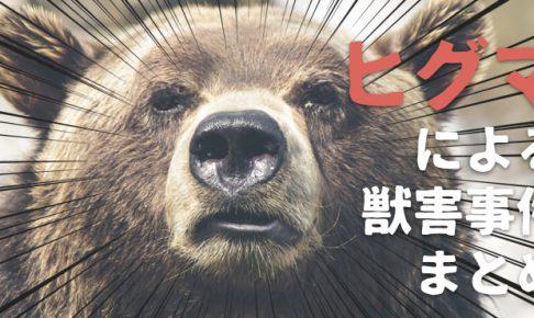 ツキノワグマの獣害事件まとめ。熊の怖さを再確認しよう!