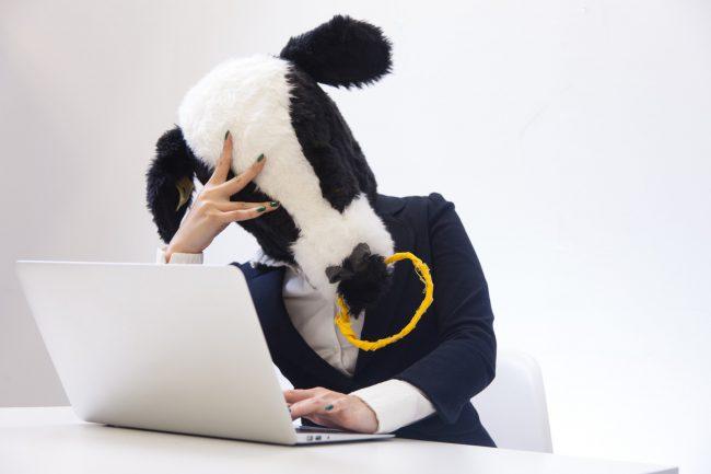 社畜としての洗脳と解けた者の末路。ブログ8ヶ月目のあれこれ