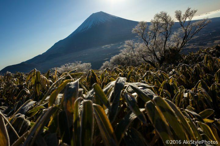 初日の出スポット!竜ヶ岳のダイヤモンド富士を狙った結果(2016年12月)