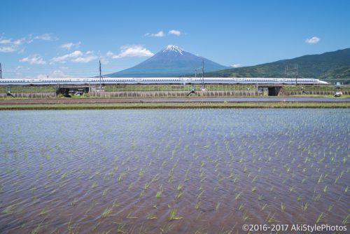 季節ものに疎い僕が撮影した富士山。5月の撮影まとめ