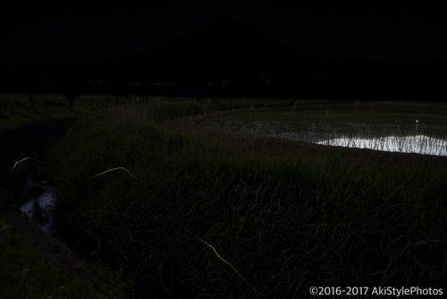 ホタルと富士山。僕の撮影方法とか比較明合成の裏側をネタバレ