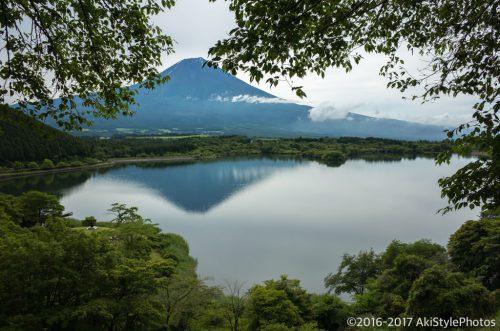田貫湖のたぬき展望台