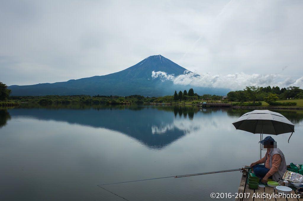 田貫湖の一本松桟橋からの富士山