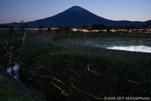 御殿場でホタルと富士山