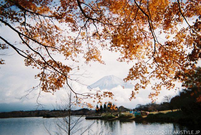 「写ルンです」で撮影した富士山と紅葉