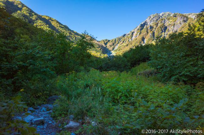 大樺沢から眺む北岳
