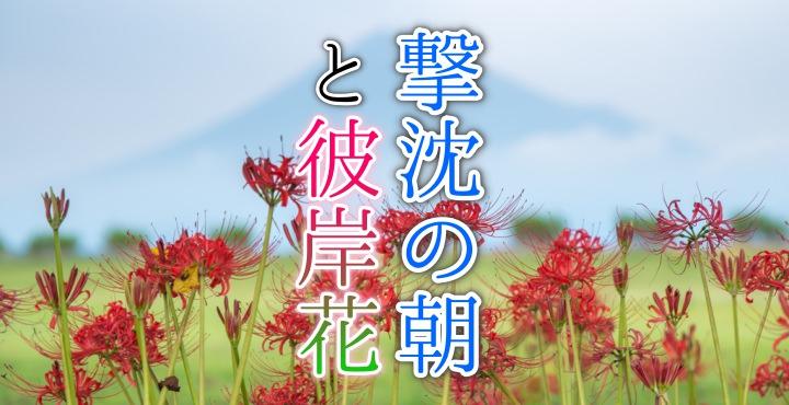 富士市の彼岸花と富士山
