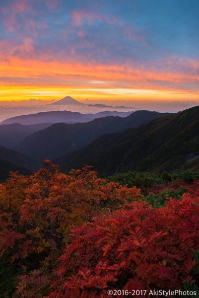 北岳から朝焼けと富士山とナナカマドの紅葉
