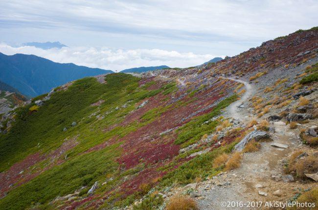 北岳肩の小屋付近の登山道