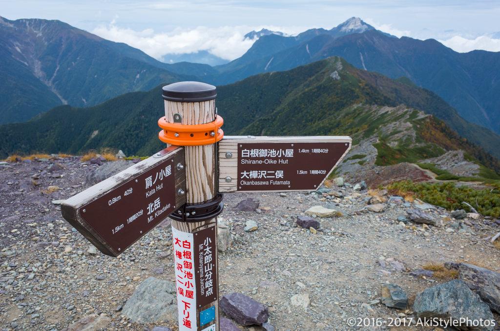 北岳の小太郎山分岐