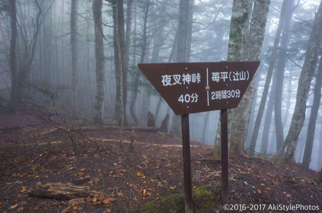 夜叉神峠から杖立峠