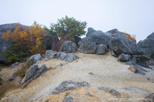 薬師岳前の砂払岳
