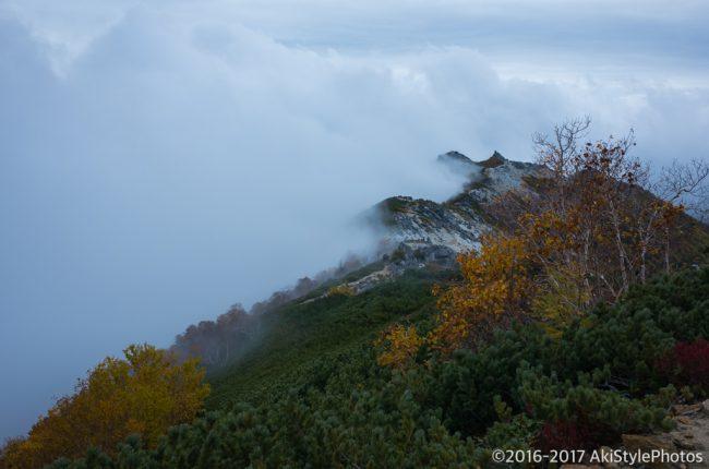 観音岳から見る薬師岳