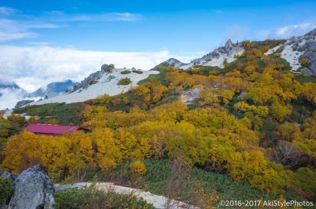紅葉に囲まれた薬師岳小屋