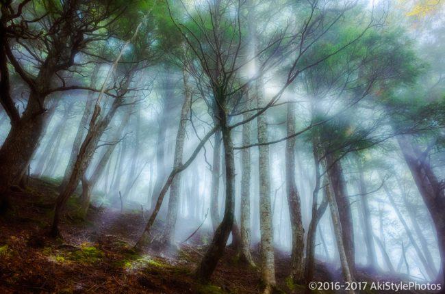 薬師岳、下山時の景色