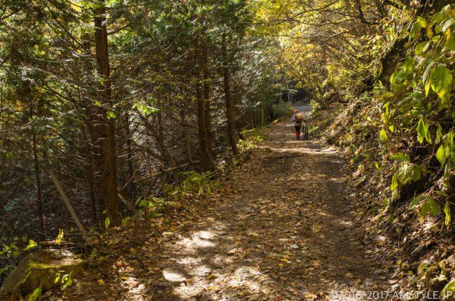 三ツ峠山の登山道