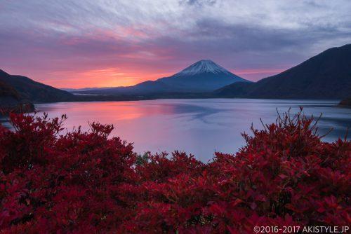 本栖湖のツツジの紅葉と朝焼け富士山