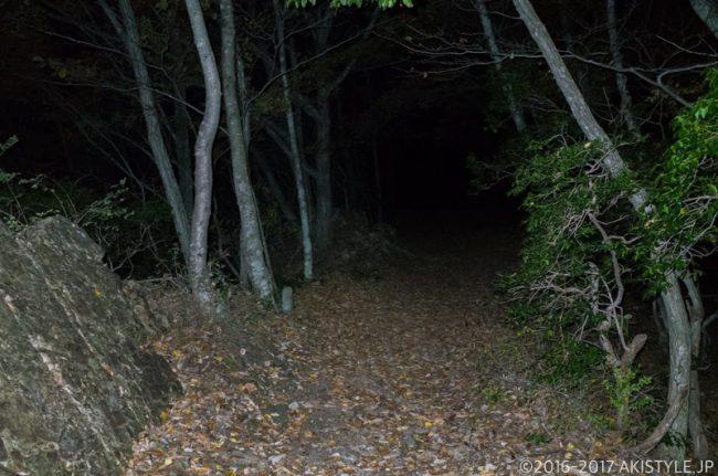 精進湖パノラマ台への登山道