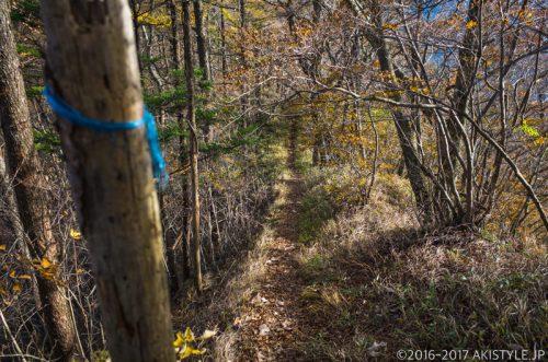 精進峠から三方分山へ紅葉ハイキング
