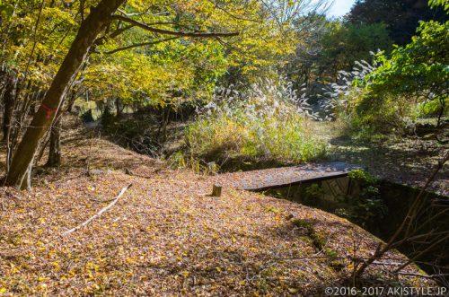 精進峠の登山道