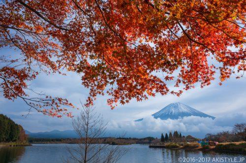 田貫湖の紅葉と富士山