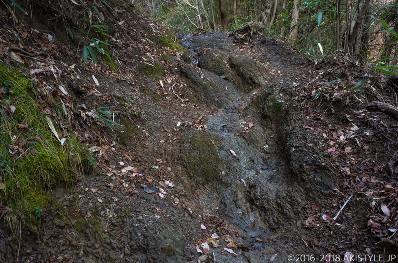 竜爪山の登山道