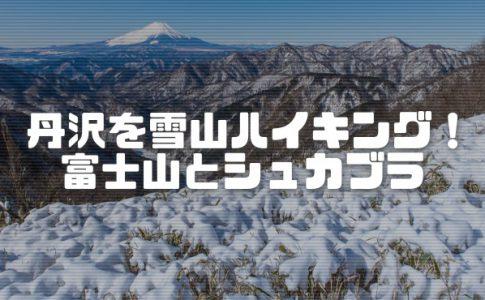 塔ノ岳を雪山ハイキング