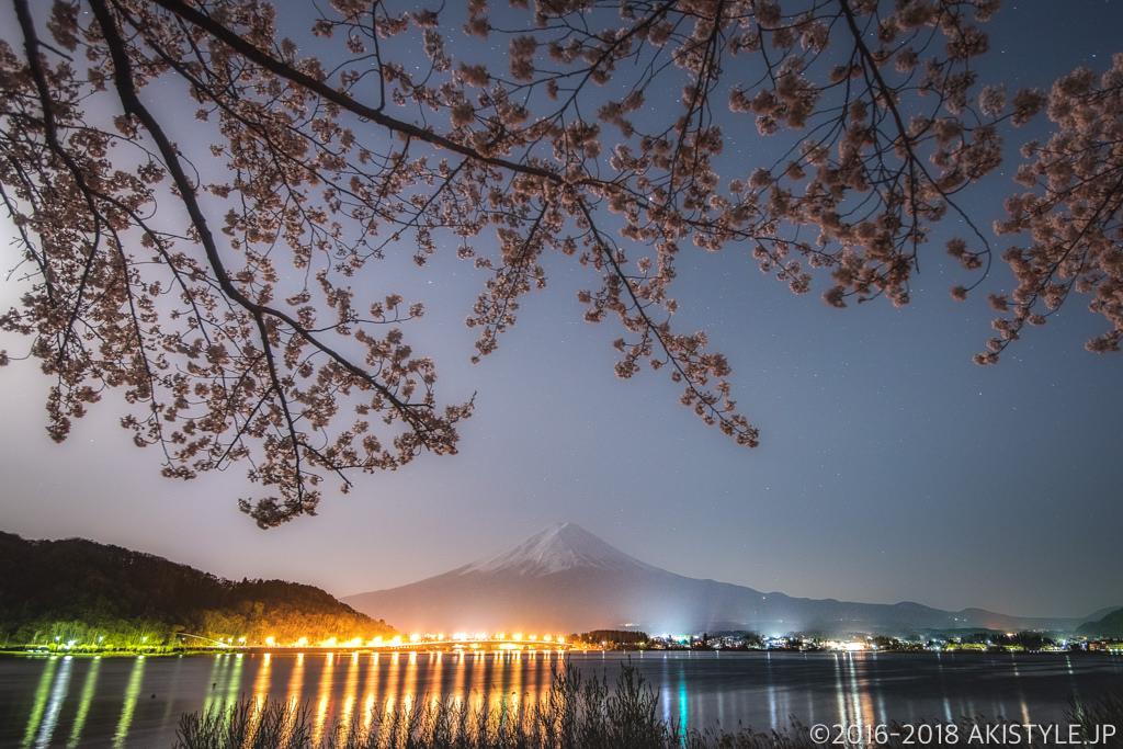 河口湖の夜桜と富士山