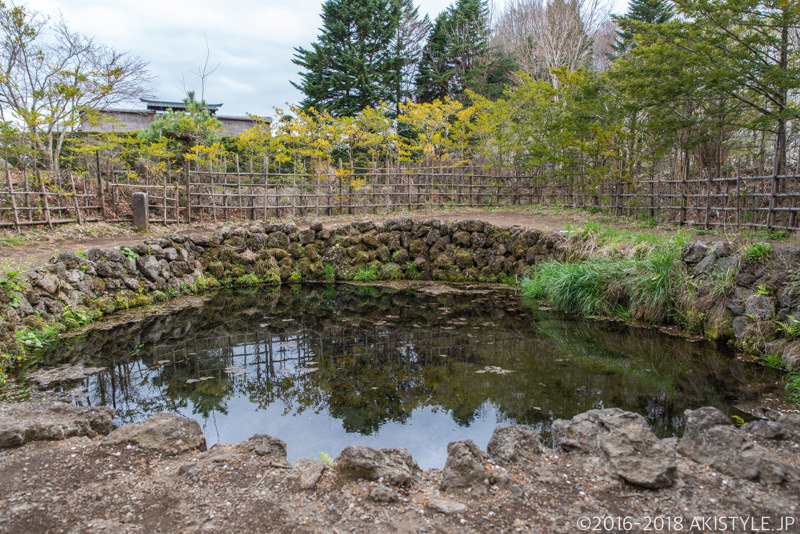 忍野八海の銚子池