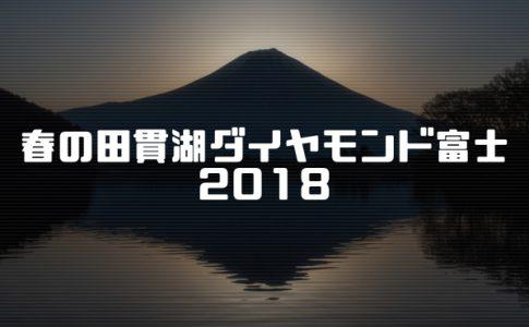 春の田貫湖ダイヤモンド富士2018