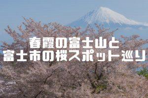 富士市の桜スポット巡り