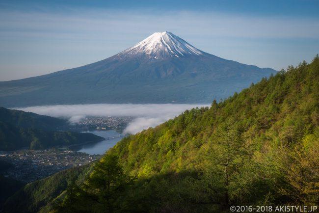 御坂山からの富士山と新緑と雲海