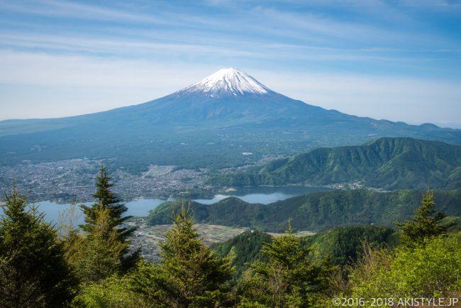 新緑の新道峠から見る富士山と河口湖