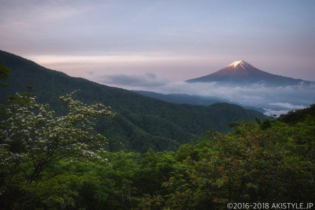 御坂峠から見た富士山と雲海