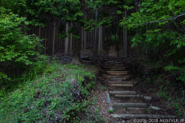 田貫湖、長者ヶ岳への登山道
