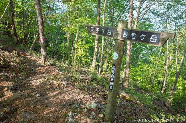 長者ヶ岳から天子ヶ岳への登山道