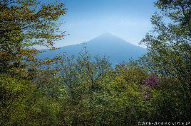 天子ヶ岳から見た富士山
