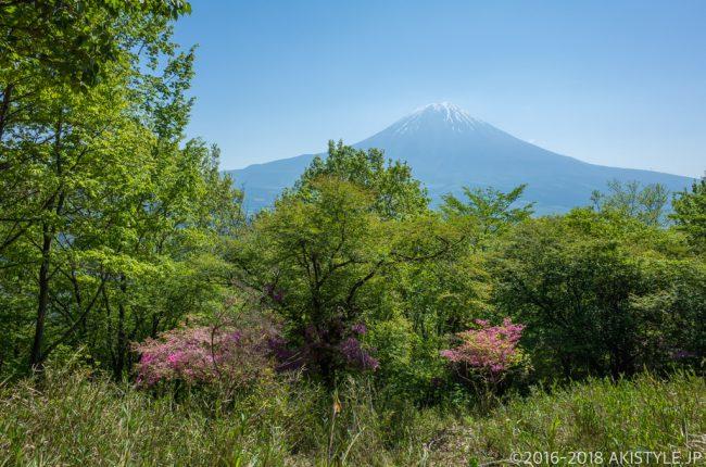 長者ヶ岳の登山道から見る富士山