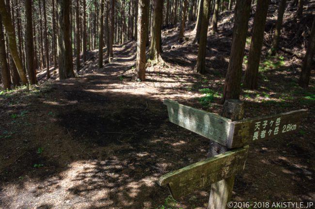 長者ヶ岳、田貫湖キャンプ場への分岐点