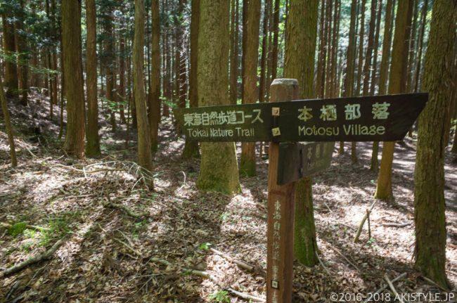 本栖湖の東海自然歩道
