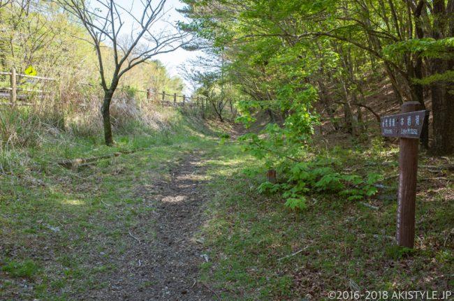 県道139号沿いの東海自然歩道