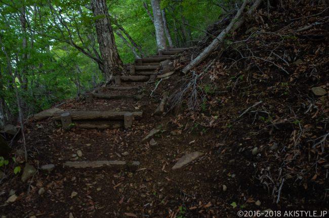 御坂峠までの登山道