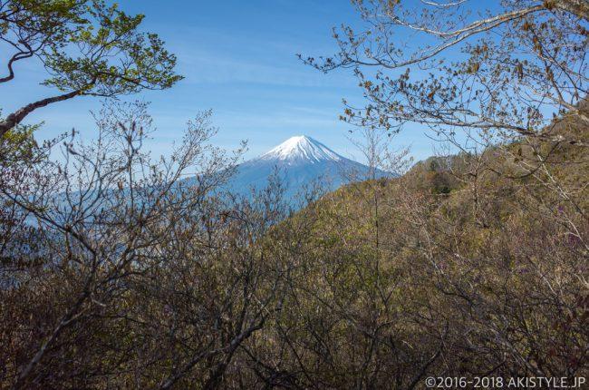 旧御坂峠から見る富士山