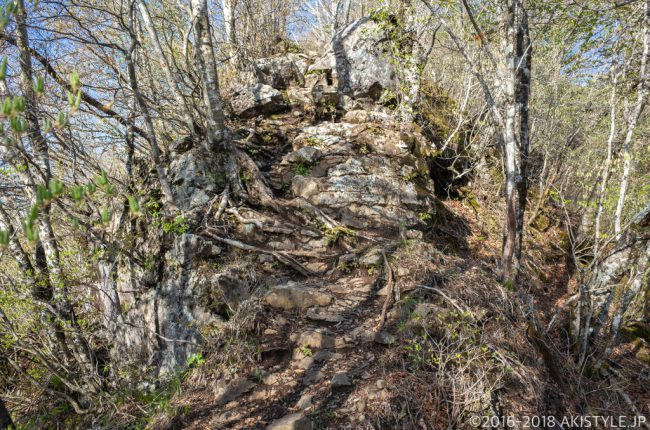 黒岳への登山道