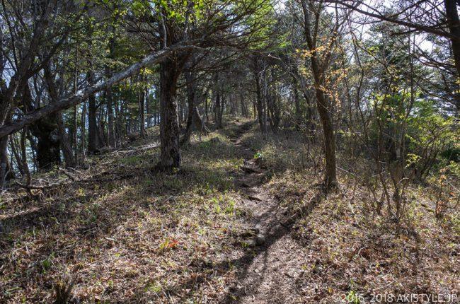 新道峠から破風山への登山道
