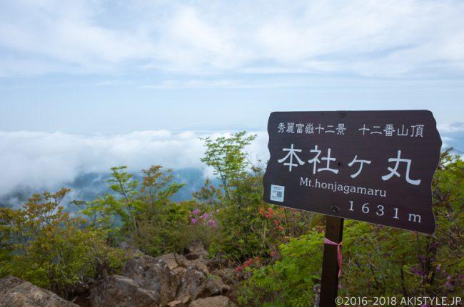 本社ヶ丸の山頂