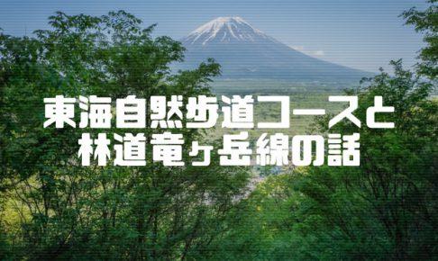 東海自然歩道と林道竜ヶ岳線の話
