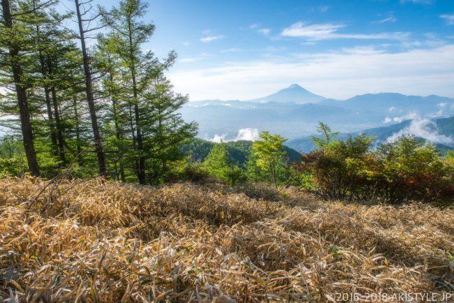 奥甘利山からの新緑と富士山