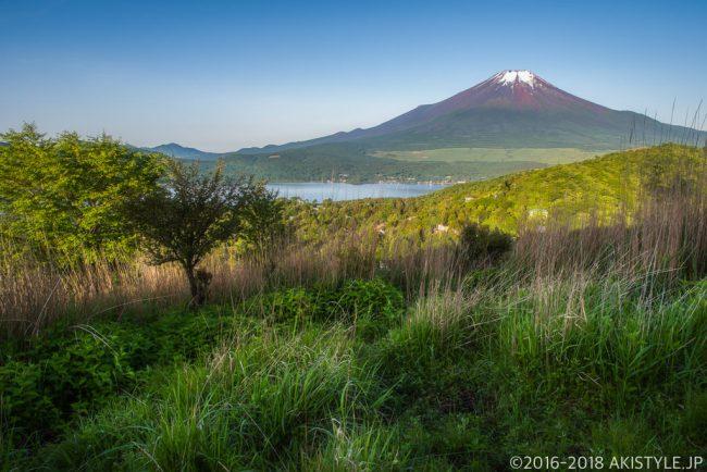 平尾山から見た富士山