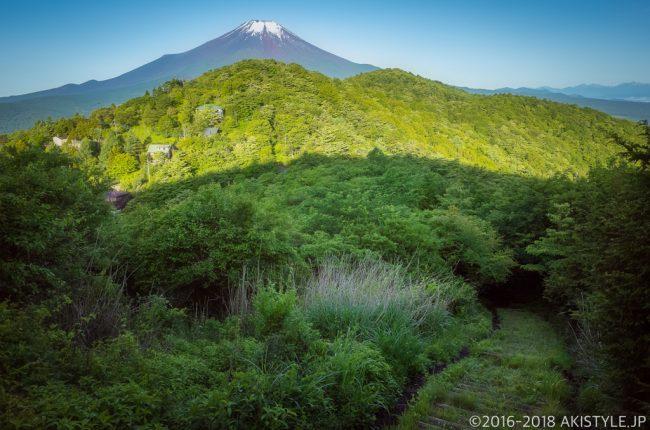 平尾山から見る新緑と富士山